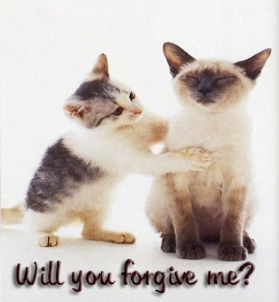 Sad Love Quotes Wallpapers Free Download In Hindi Will You Forgive Me Desicomments Com