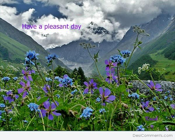 Hindi Sad Wallpapers With Quotes Have Pleasant Day Desicomments Com