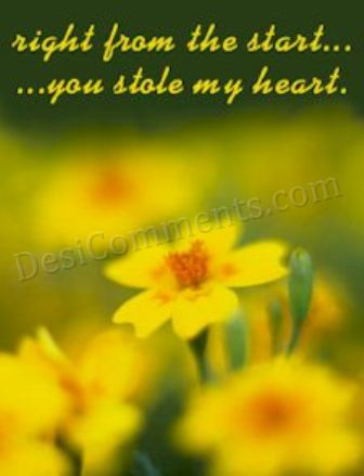 Sad Girl Wallpapers With Quotes In Punjabi Beautiful Yellow Flowers Desicomments Com
