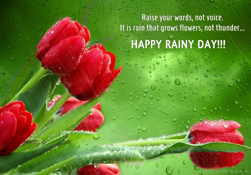 Ganesh Chaturthi Wallpapers 3d Happy Rainy Day Desicomments Com