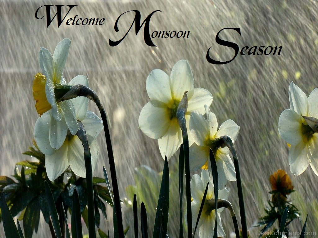 Love Hd Wallpaper With Quotes In Hindi Welcome Monsoon Season Desicomments Com