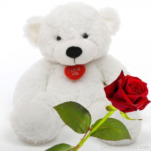 Cute Love Animations Wallpapers White Teddy Bear With Rose Desicomments Com