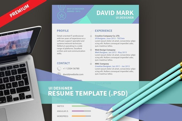 UI Designer Resume Template (PSD) Design3edge - web designer resume template