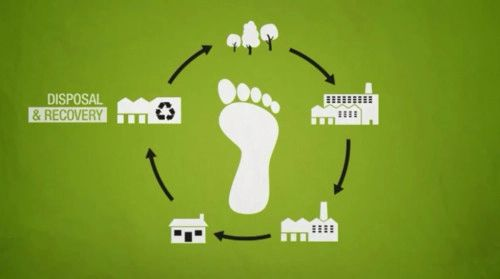 About paper s ecological footprint design and paper