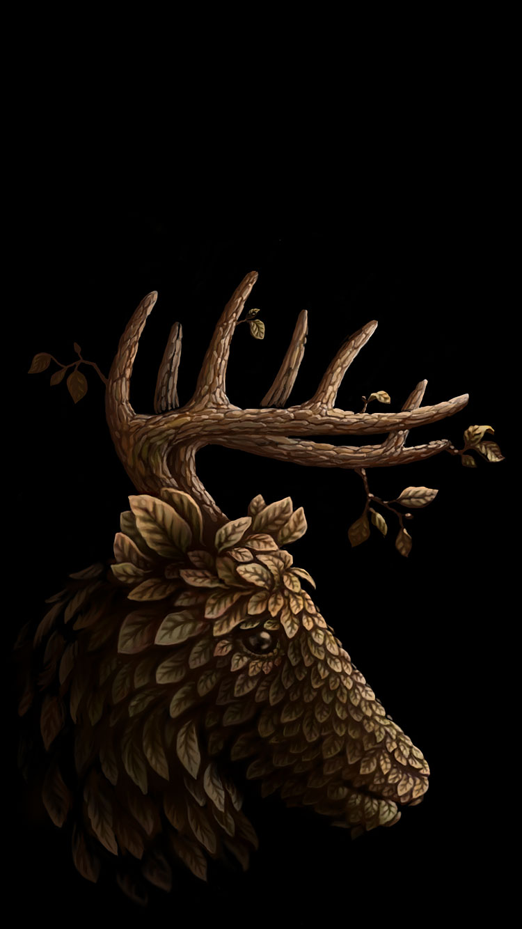 Moose Cute Minimalist Wallpaper 25 Best Cool Iphone 6 Wallpapers Amp Backgrounds In Hd