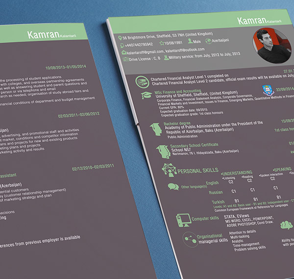 50+ Beautiful Free Resume (CV) Templates in Ai, Indesign \ PSD Formats - 2 page resume template
