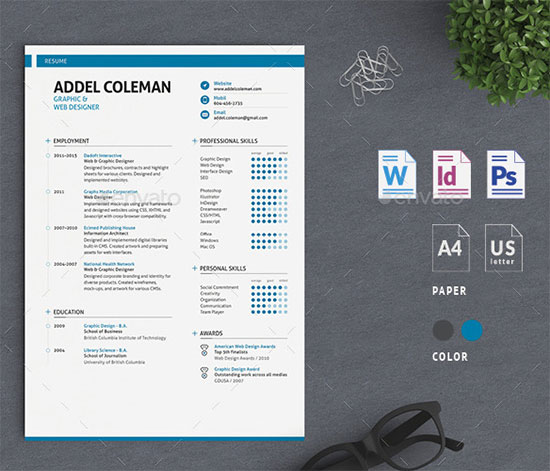 10 All Time Best Premium Simple  Infographic Resume / CV Template - resume template on word