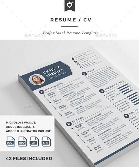 10 All Time Best Premium Simple  Infographic Resume / CV Template