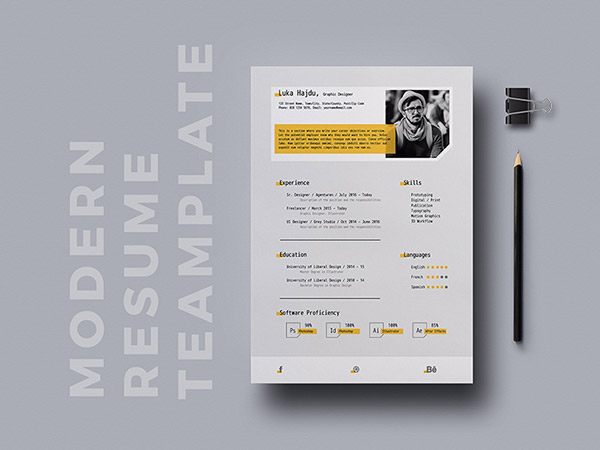 ecommerce resume template