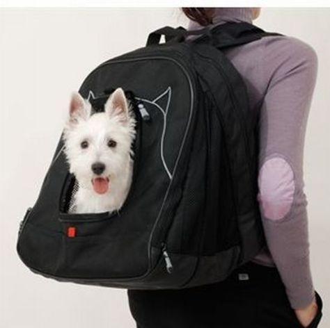 pet laptop backpack 02