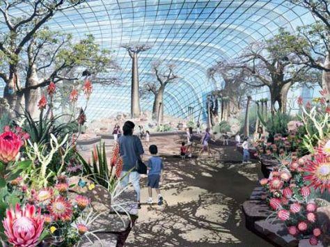 solar trees garden 05