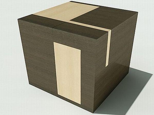 The Brain Cube
