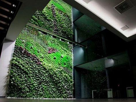 Indoor vertical garden by Urbanarbolism