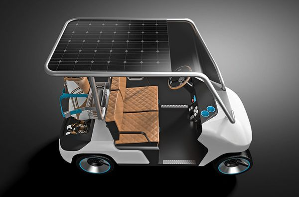 EV Cart for everyone 1