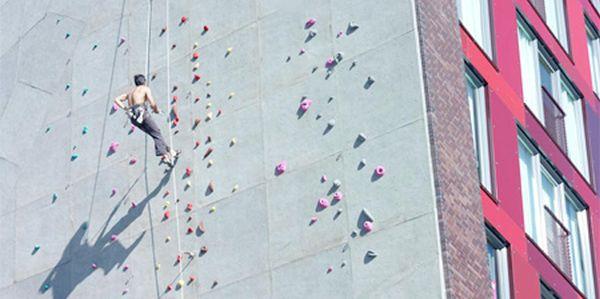 Campus climbing wall
