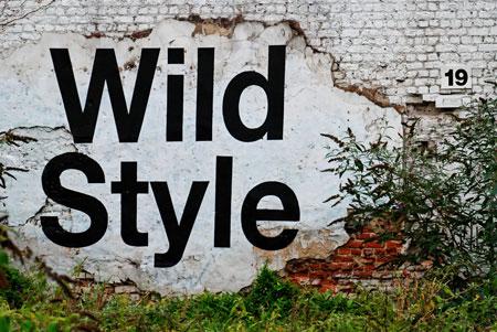 wild style type