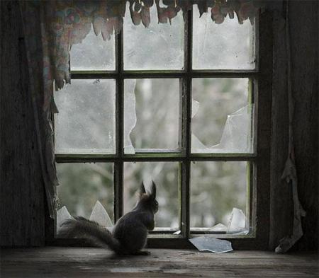 abandoned-house-3