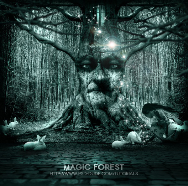 Fantasy Forest 3d Live Wallpaper 15 Very Useful Photoshop Tutorials For Designers