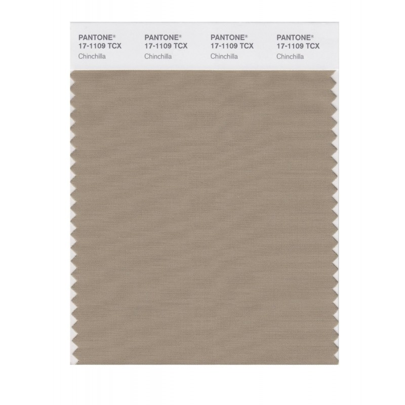 Pantone 17-1109 TCX Swatch Card Chinchilla Buy in india