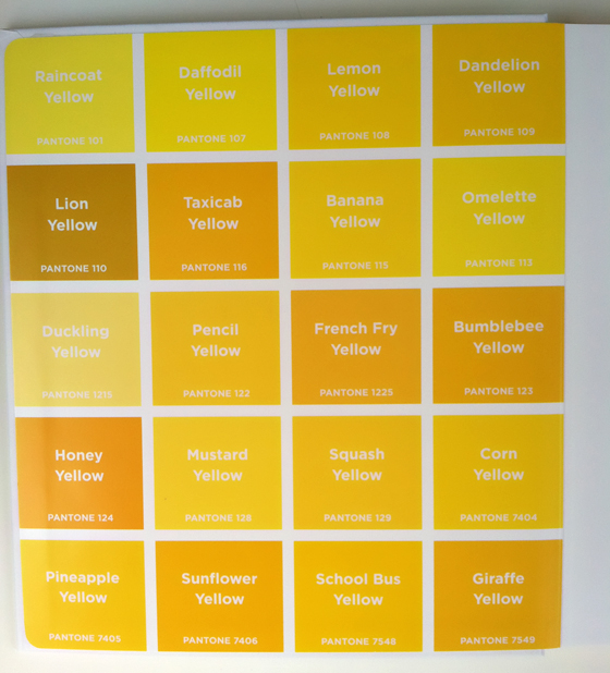 Pantone Colors – Design Of The Picture Book