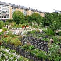 Prinzessinnengarten, l'orto urbano più bello al mondo
