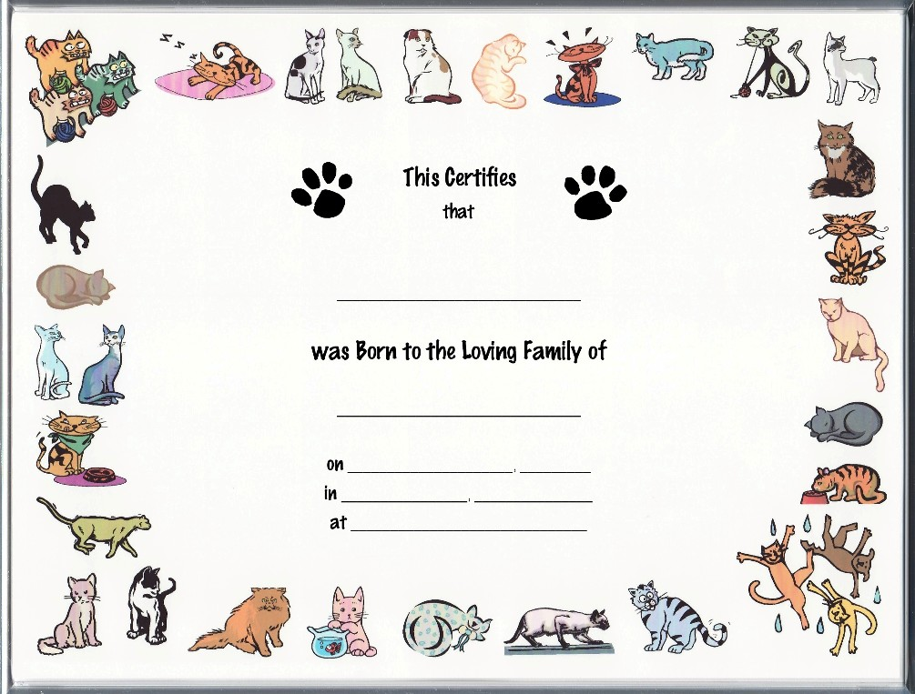 blank puppy birth certificate template - birth certificate word template