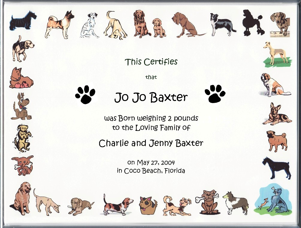 printable dog birth certificate - Klisethegreaterchurch - Birth Certificate Template Printable