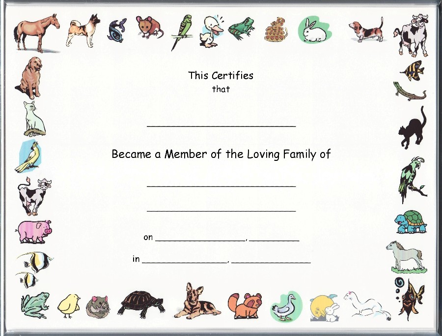 Free birth certificate templates node2003 cvresumeasprovider pet rock birth certificate template free birth certificate templates yadclub Image collections