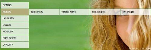 css_opacity_menu