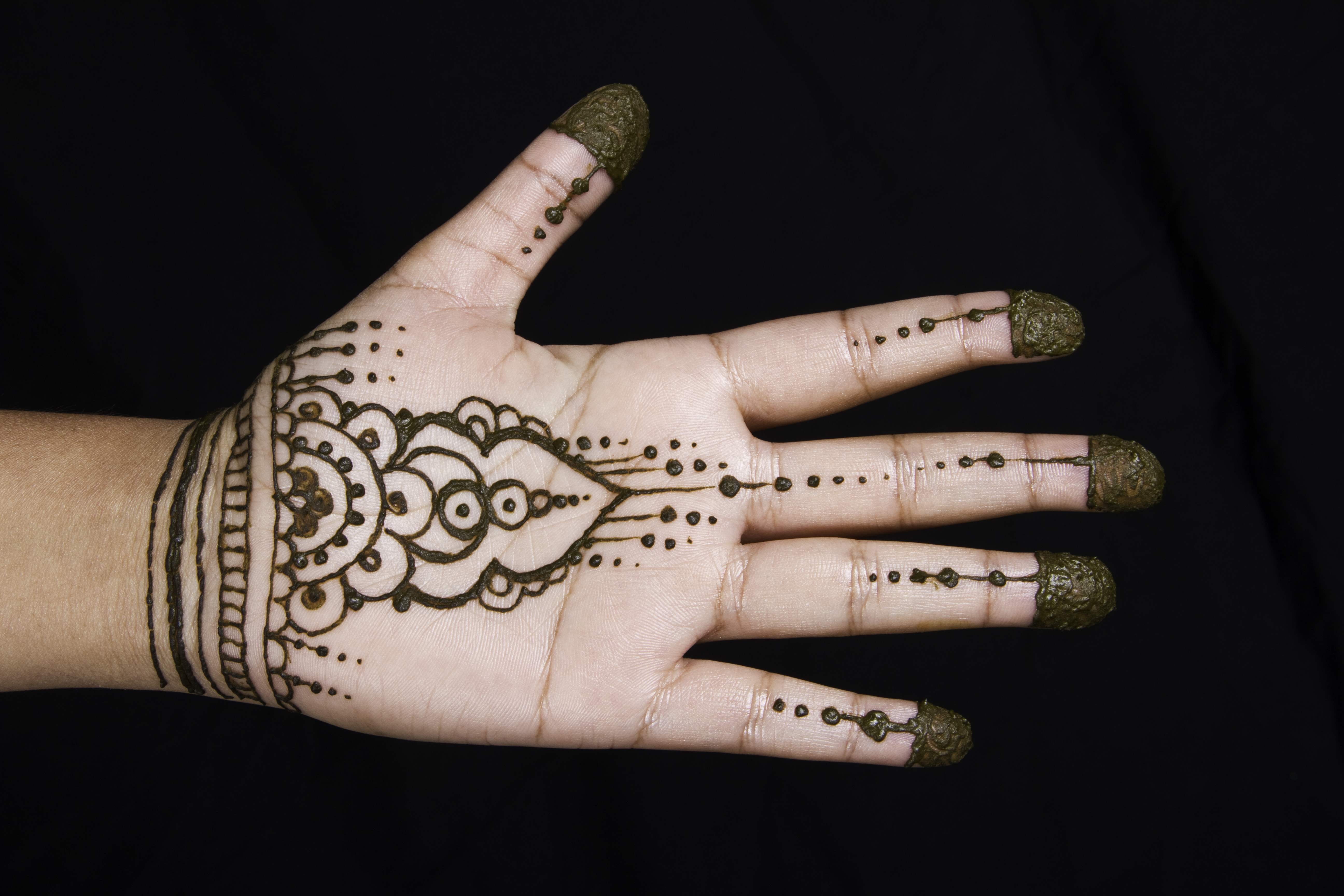 Designs Of Mehndi For Palm : Book of mehndi design for palm easy in south africa by william