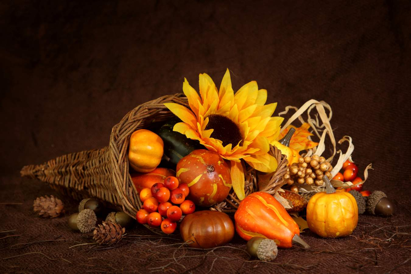 Fall Morning Wallpapers For Samsung 4 60 Hd Happy Thanksgiving Wallpapers And Printable Cards