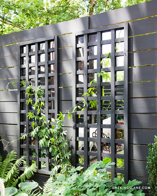 Diy Mirrored Trellis Designsponge