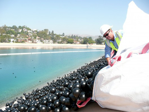 LA Silver Lake Ivanhoe lake black balls