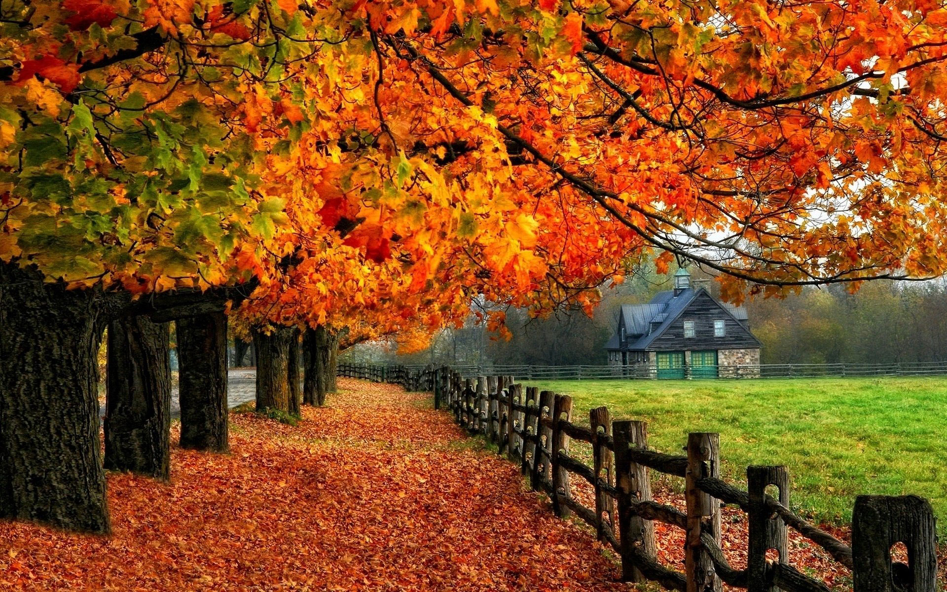 New England Fall Foliage Desktop Wallpaper Autumn Wallpaper Examples For Your Desktop Background