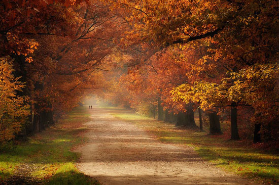 Fall Leaves Wallpaper Windows 7 A New Selection Of Beautiful And Awe Inspiring Landscape