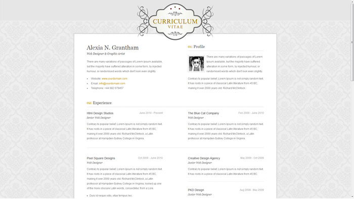 A Few Interesting Resume/CV Website Designs - web design resume