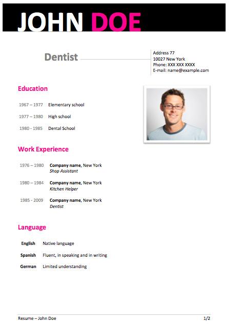modern resume format 2013