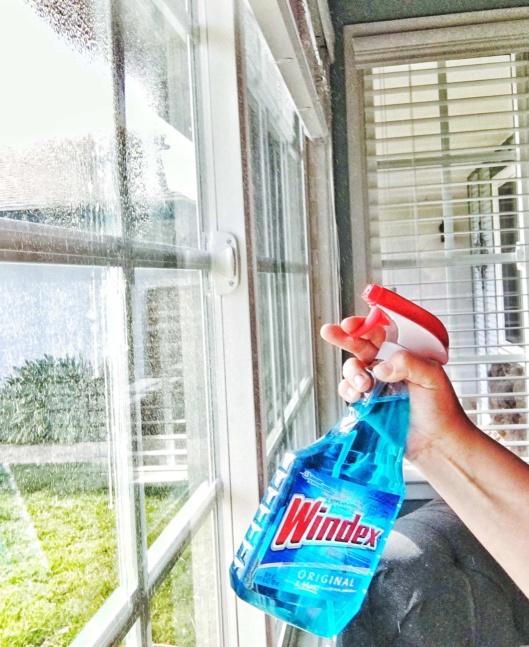 windex-spray
