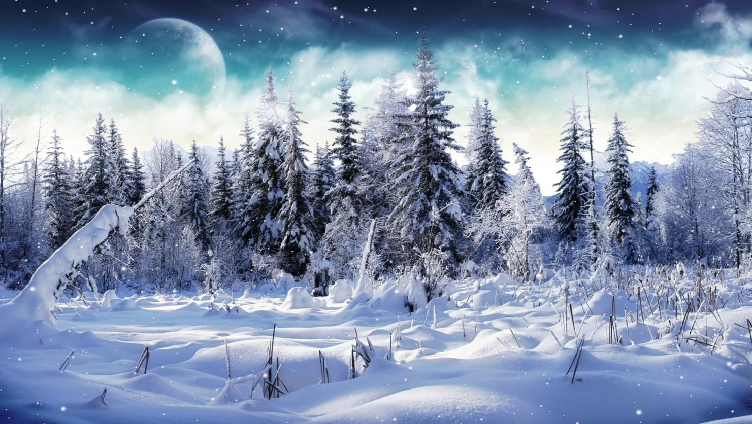 Falling Snow Wallpaper Software Cold Winter Screensaver Animated Wallpape R Torrent Download