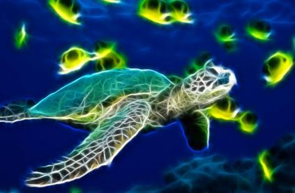 Sea Turtle Animated Wallpaper Preview