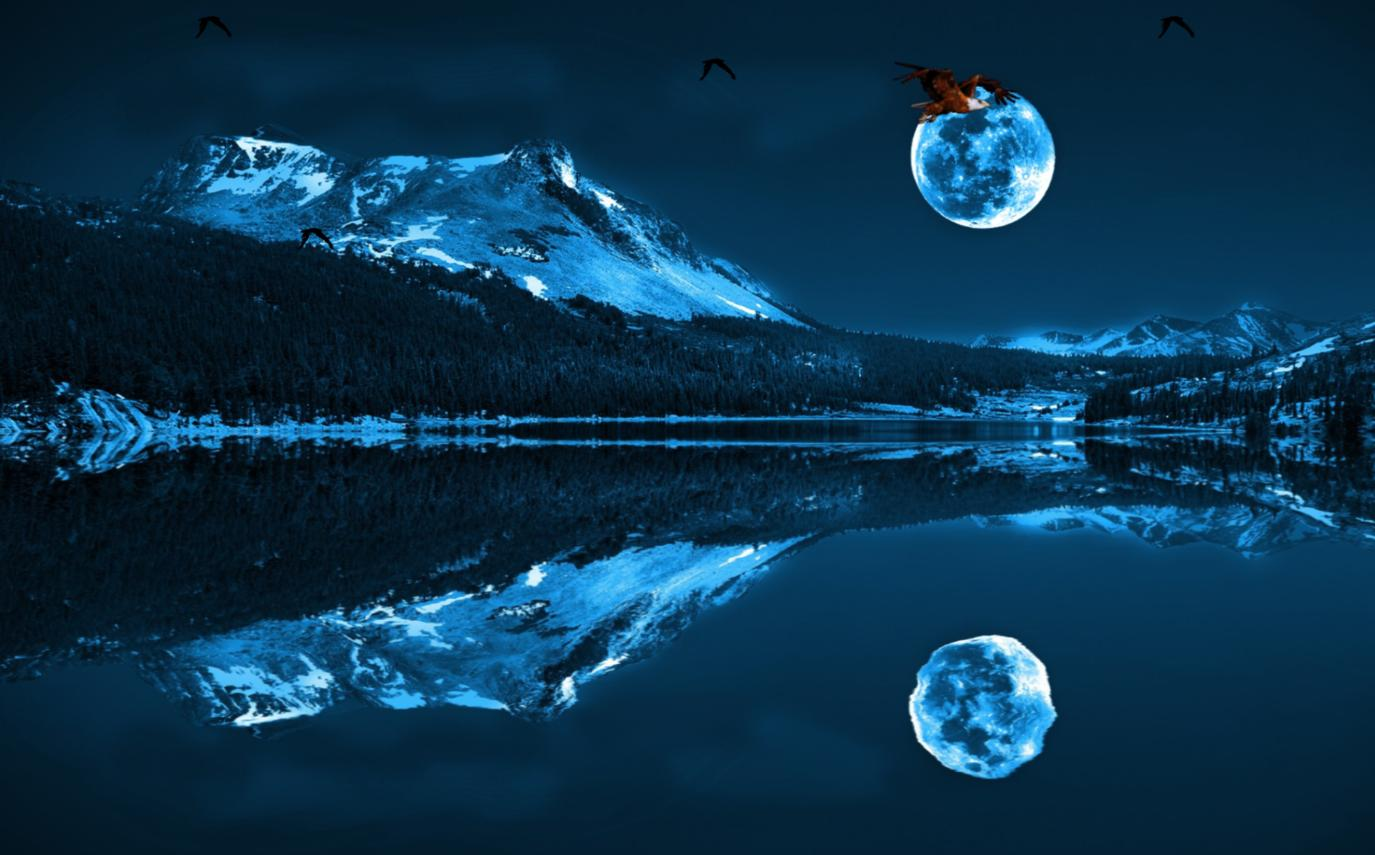 My 3d Fish Live Wallpaper Free Download Download Blue Moon Animated Wallpaper Desktopanimated Com
