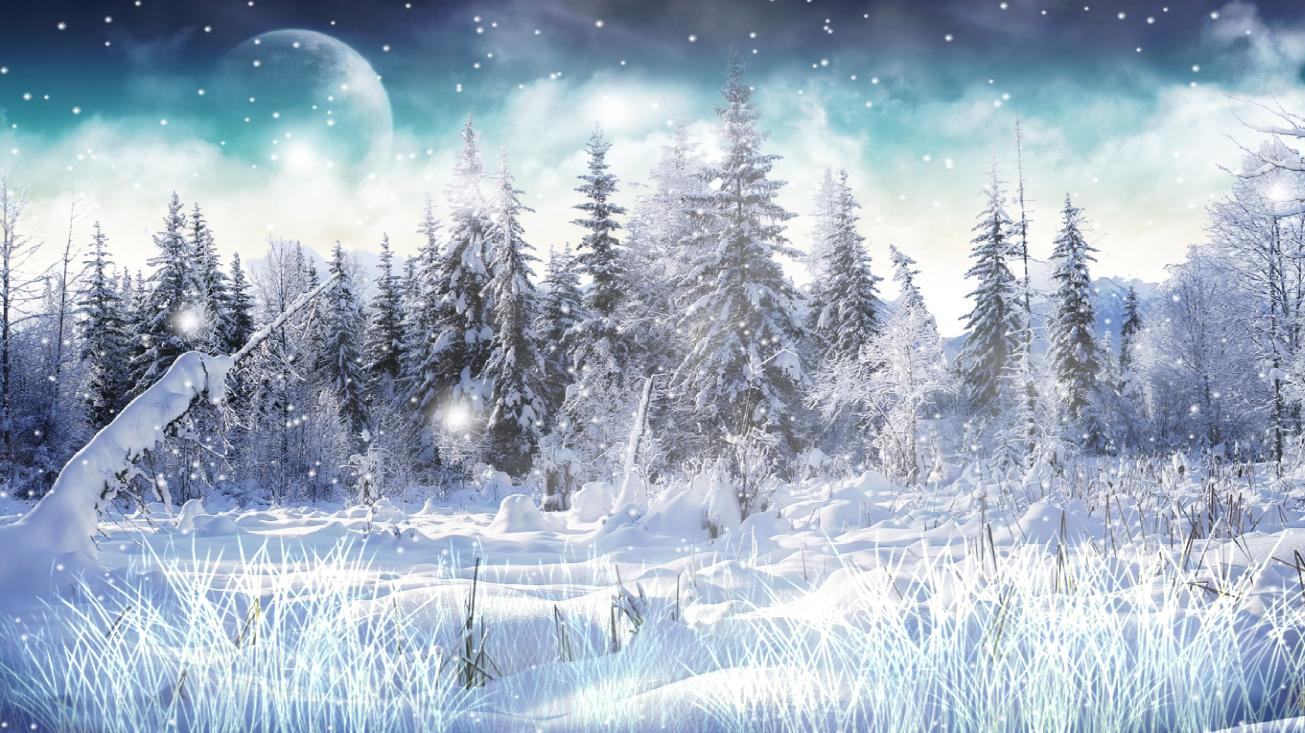 Animated Butterfly Wallpaper Download Winter Snow Animated Wallpaper