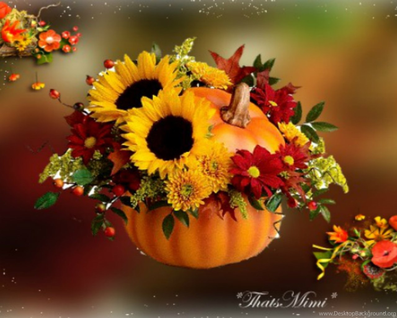 Hd Widescreen Fall Wallpaper Fall Flowers Wallpapers Celebrate Autumn Fall Pumpkin