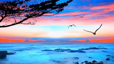 Top HD Ocean View Wallpapers Desktop Background