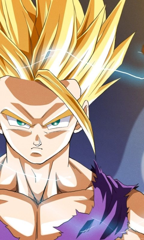 Iphone 4 Wallpaper Resolution Dragon Ball Z Super Saiyan 2 Dragon Ball Gohan Anime