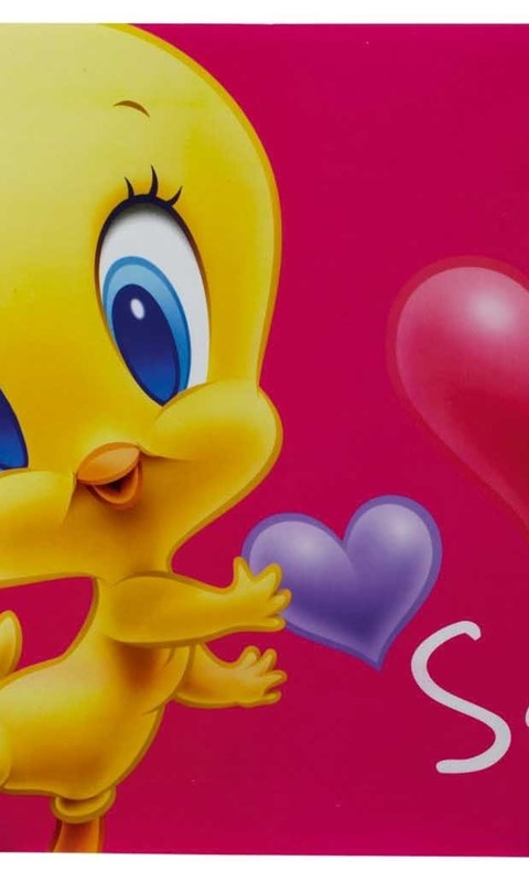 Ipad Mini Wallpaper Hd Baby Tweety Bird Pictures Hd Wallpapers And Pictures