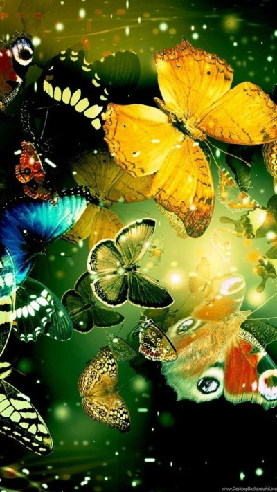 13 Cool Wallpapers Butterfly Designs HD Wallpapers 920 :: Gorgeous ... Desktop Background