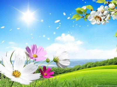 Spring Live Wallpapers Android Apps On Google Play Desktop Background