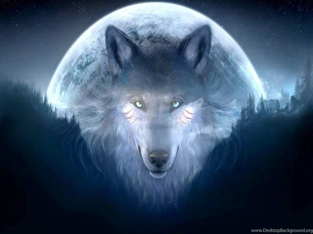 Lavender Color Wallpaper Hd Cool Wolf Backgrounds 11071 Hd Wallpapers In Animals