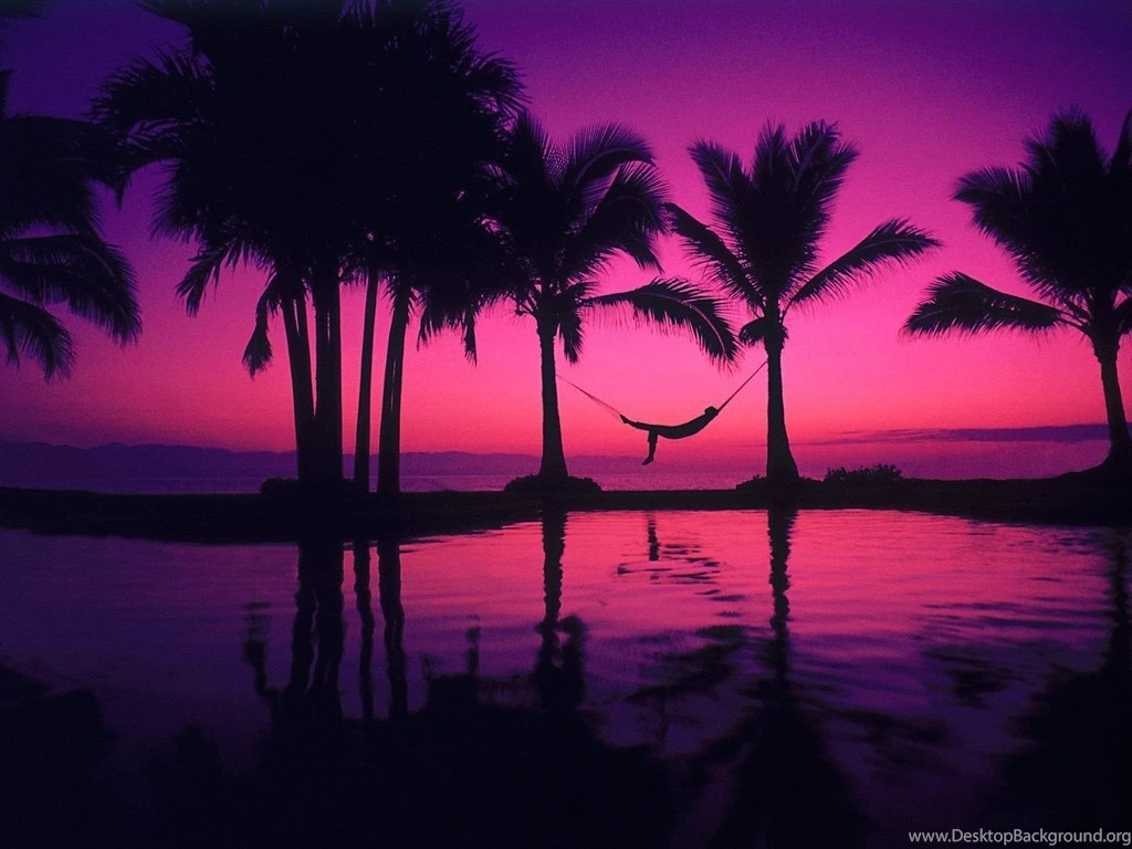 Ipad Mini Wallpaper Hd Top Purple Sunset Desktop Wallpaper Images For Pinterest